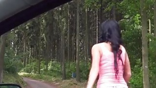 Perky tits teen girl Daphne Klyde pounded in countryside Thumbnail